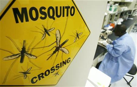 Worker Solomon Conteh dissects a mosquito at Sanaria Inc. facility in Rockville