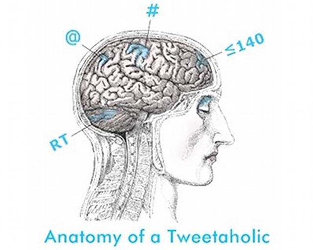 Anatomia_Twitter