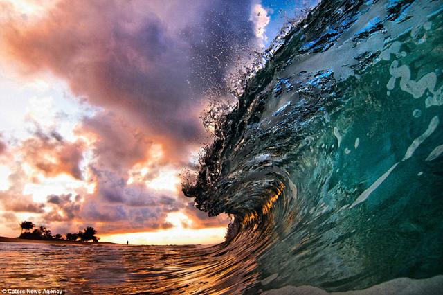 OLAS_HAWAII_03