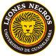 Tigres vs Leones Negros
