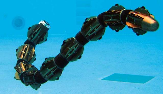 Robot Serpiente