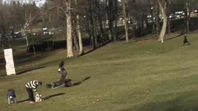 golden eagle toddler  YouTube