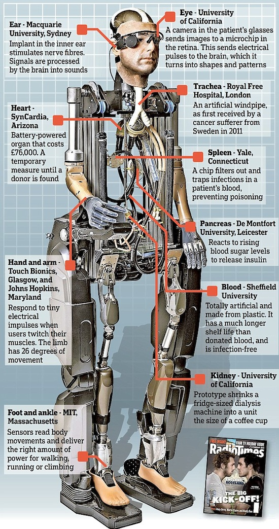 Rex robot humano 03