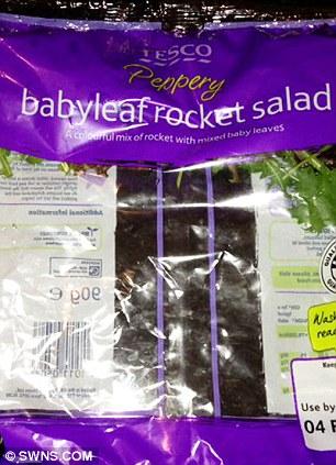 Tesco Salad 1