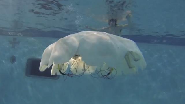 Cyro-medusa-robot