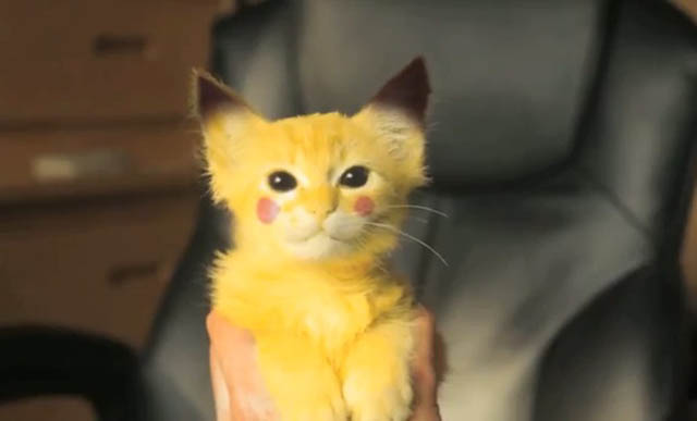 real_pikachu