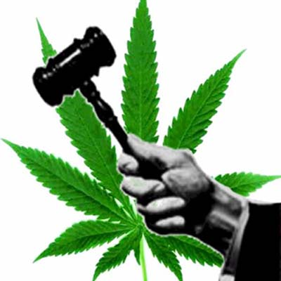 legalizacion_11