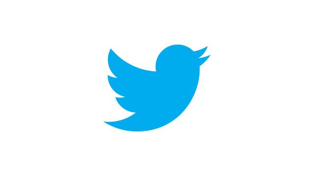 nuevo-pajaro-twitter