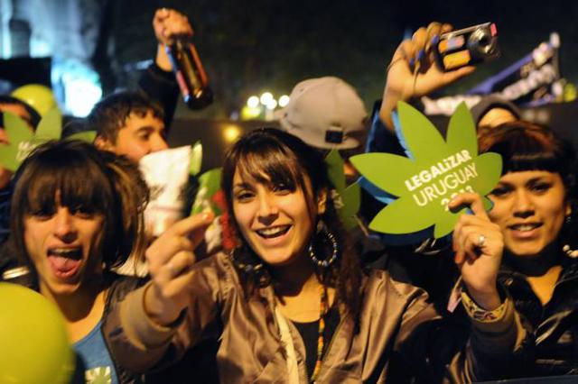 uruguay marihuana 2013