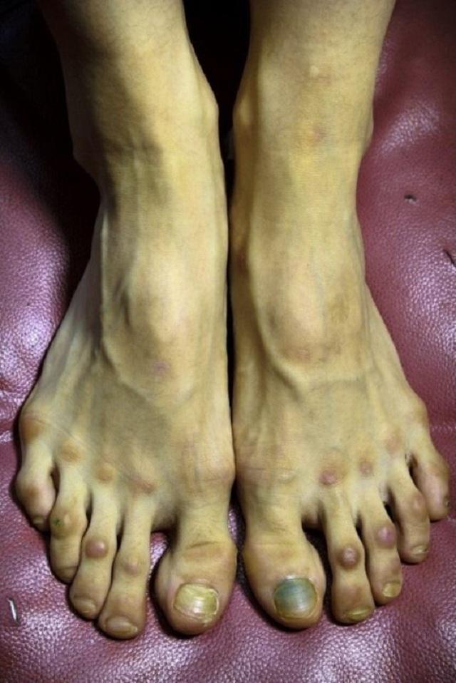 Ballet pies2