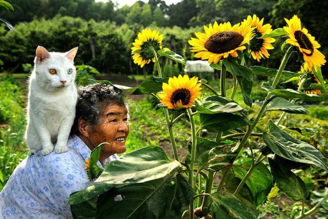 abuelita y gato