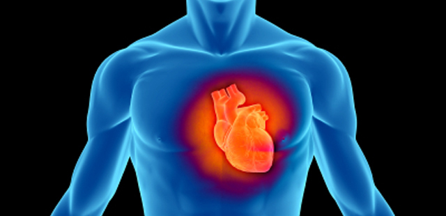 cardiovascular_enfer_