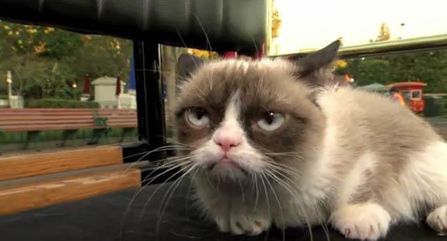 grumpy_cat_disney_3