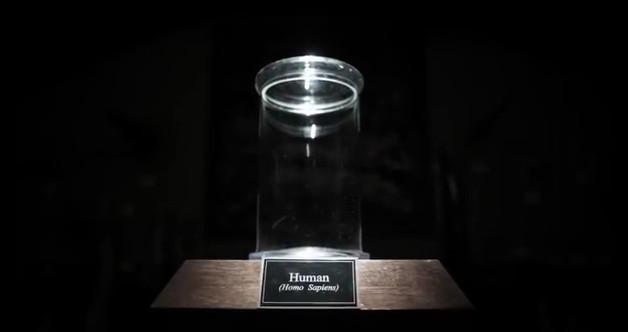 human_pen
