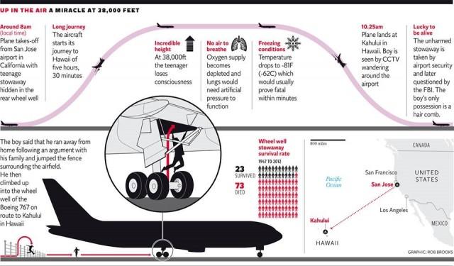 grafico vuelo independent