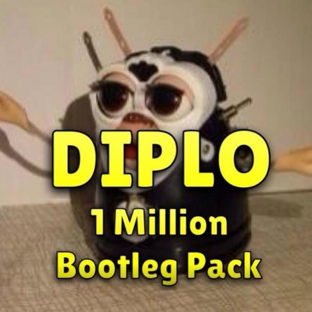 diplo2