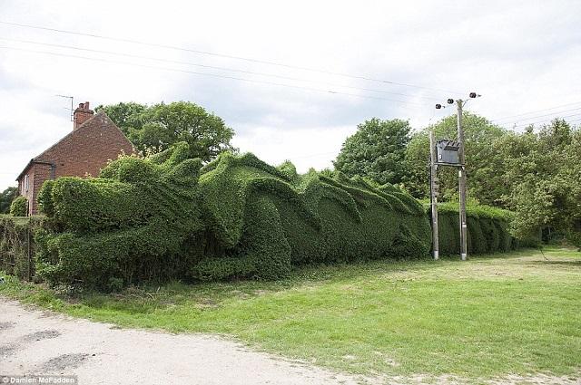 dragón jardín05