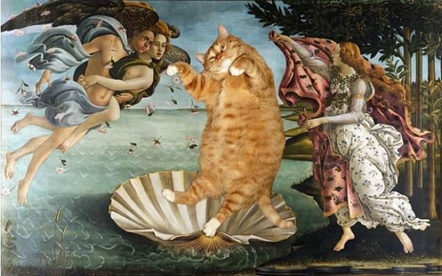 arte gato12