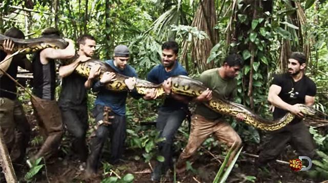 anaconda-discovery02
