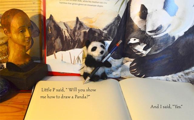 dibujar-panda01