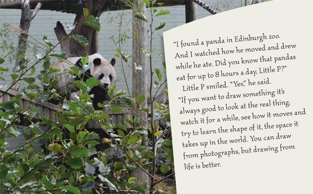 dibujar-panda03