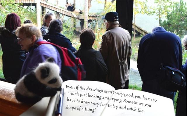 dibujar-panda04
