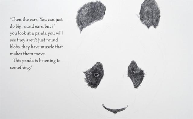 dibujar-panda07