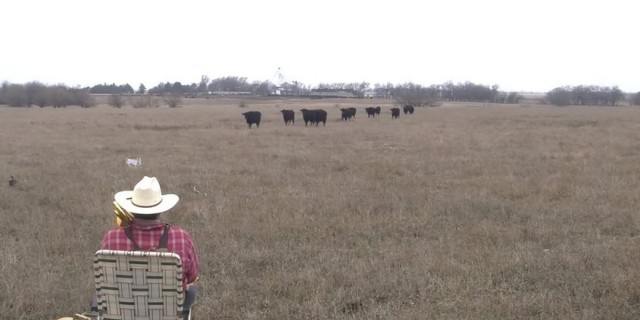 o-FARMER-DEREK-COWS-TROMBONE-JINGLE-BELLS-facebook
