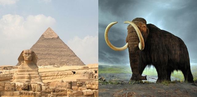mamut_piramide_