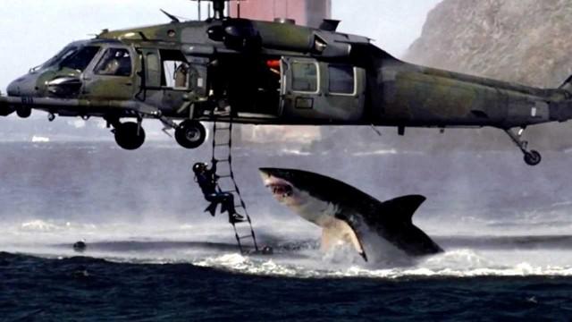 Helicopter Shark