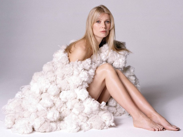 celebrities-wonderful-sexy-gwyneth-paltrow-wallpaper-background-2uoy5lhkp4jd38qxactngg