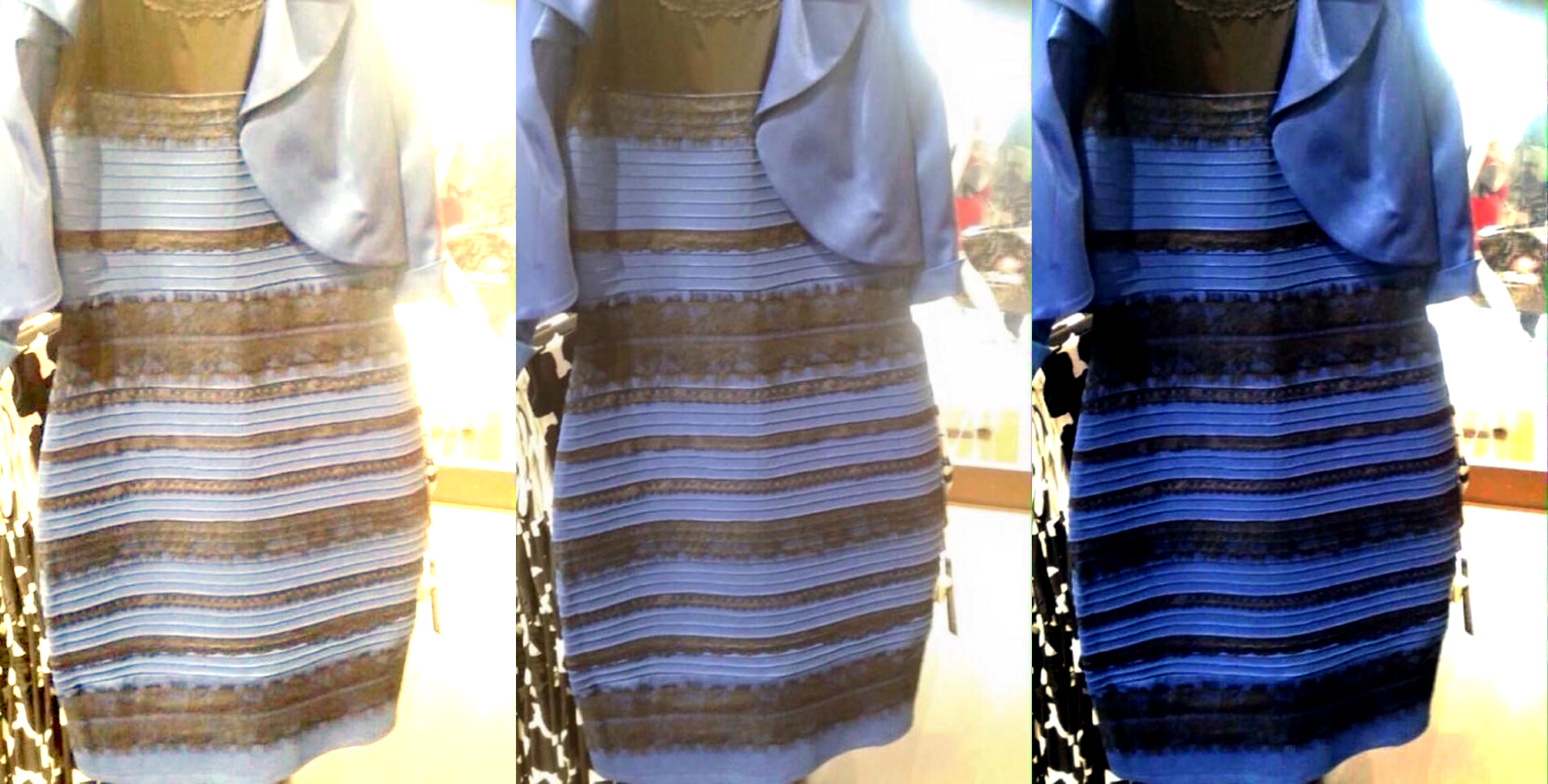vestido the dress