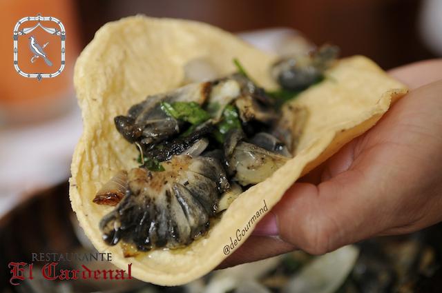 Taco de huitlacoche -5