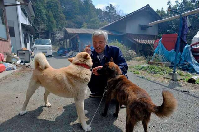 fukushima-radioactive-disaster-abandoned-animal-guardian-naoto-matsumura-17