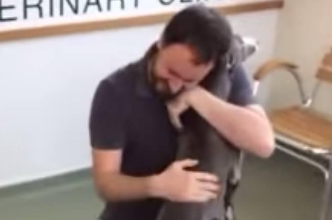 perro-robado-se-reune-con-su-dueño