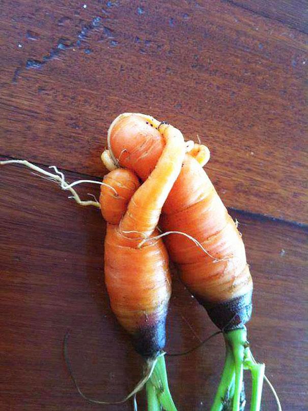 unusual-shape-fruit-vegetables-16__605