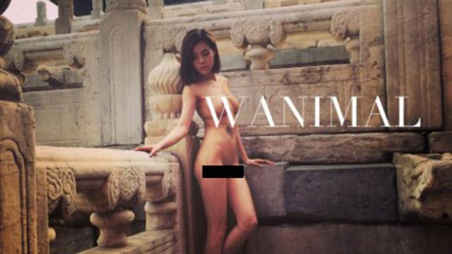 wanimal_d