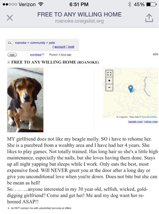 Good-guy-chooses-his-beagle-over-his-dog-hating-girlfriend-in-epic-craigslist-ad11-650x878