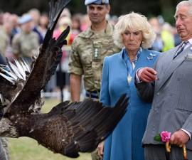 Prince-Charles-Meme-Eagle-