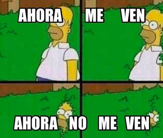Memes fuga El Chapo 6