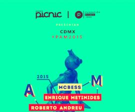 congreso picnic 2015