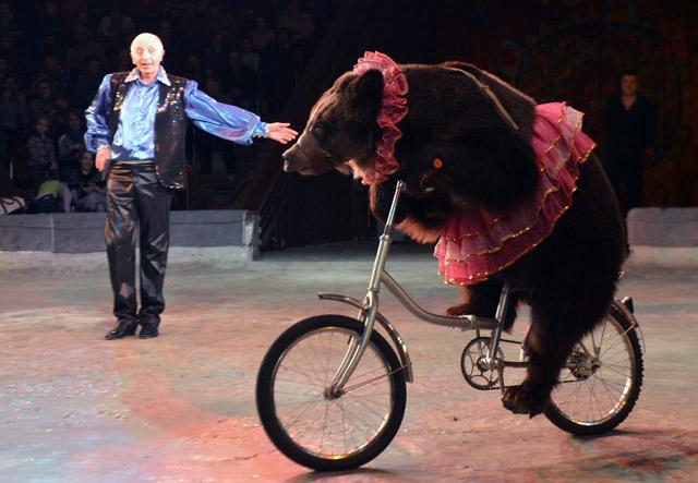 Circo-Animales-2