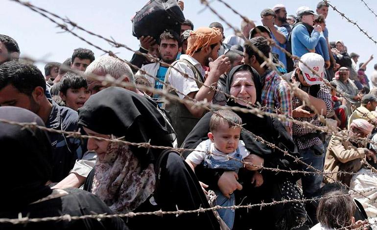 cm refugiados