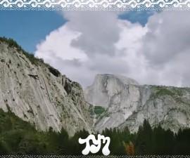 toroymoi