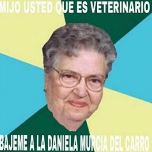 mememurcia3