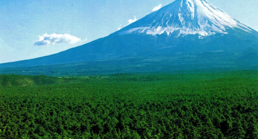 Monte Fuji Aokigahara el bosque de los suicidios