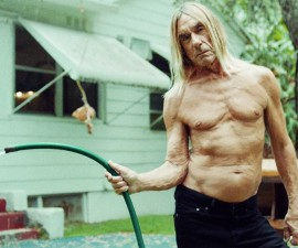 iggy pop the stooges