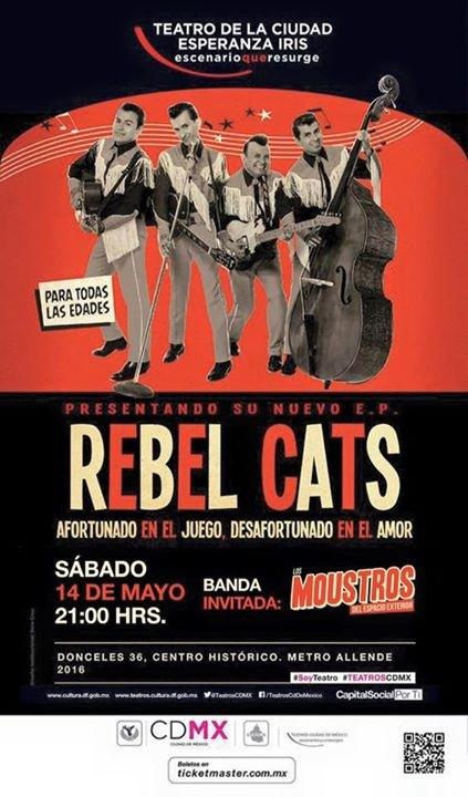 rebel cats flyer
