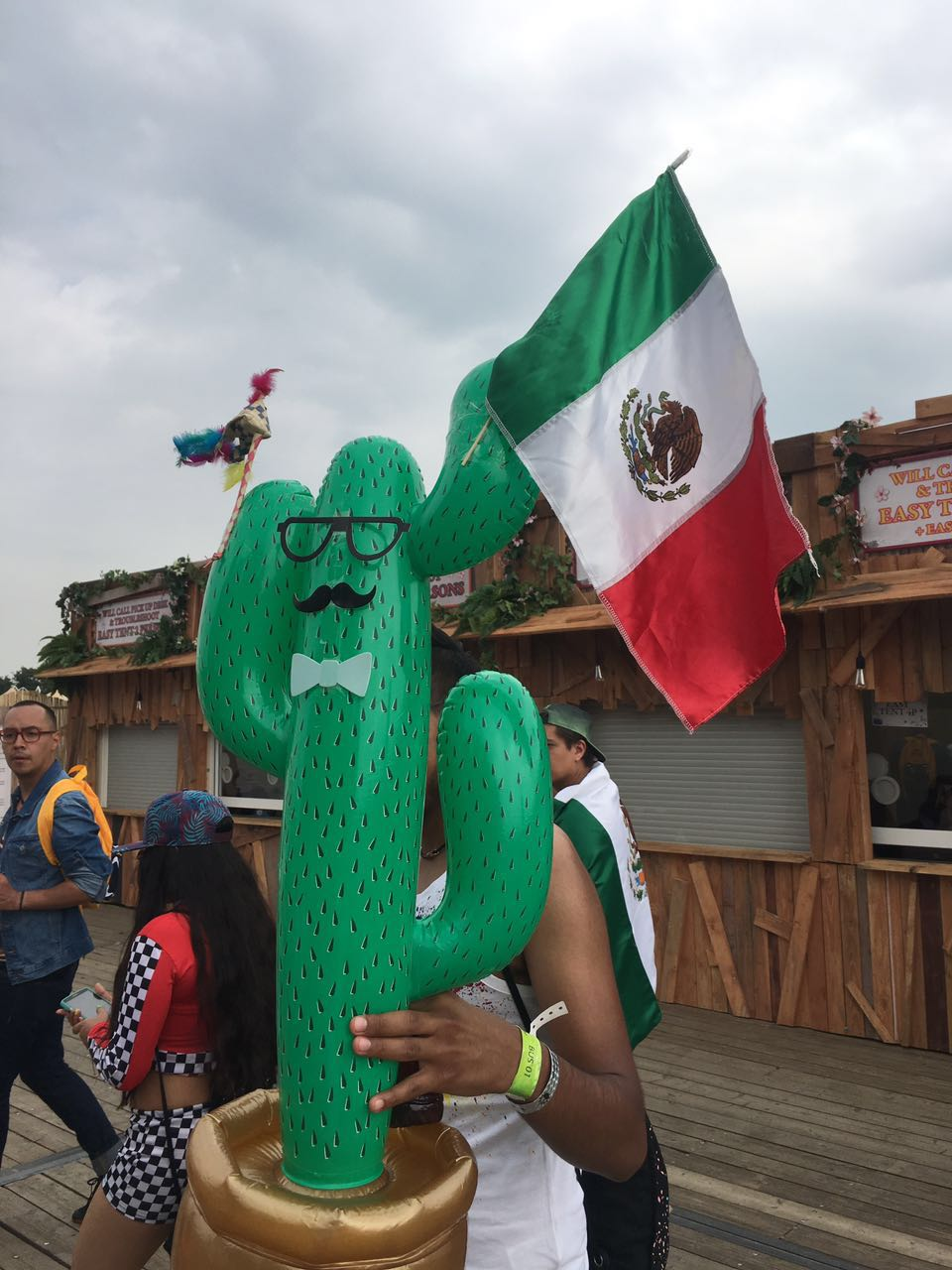 Tomorrowland-2016-Mexico-Bandera-Cactus