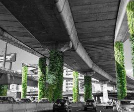 periferico verde